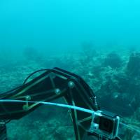 A view from inside a two-person submersible on March 21 shows the ocean floor near Fort Lauderdale, Florida, where a port dredging project may kill parts of a fragile coral reef, the only barrier reef in the continental United States. | AFP-JIJI