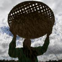 A Philippine worker sieves rice in a field in San Ildefonso, Bulacan province, on Thursday. | REUTERS