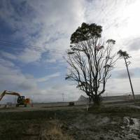 A worker uses a power shovel to remove contaminated topsoil in Tomioka, Fukushima Prefecture, on Feb. 23, ahead of the fifth anniversary of the March 11, 2011, disasters. | AP