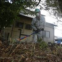 Fukushima's decontamination workers from the margins of society are being 'exploited'