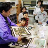 Members of the support group for the Osaka Museum of Natural History attend a tour of its treasure house on Feb. 14. | KYODO