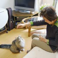 Kayoko Kitao spends time with her cat, Ku, on Feb. 22 at a condominium for elderly people in Fujimino, Saitama Prefecture, that allows residents to live with pets. | KYODO