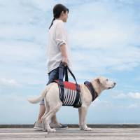 A special walking harness for elderly dogs is one of many products being developed as pets live longer. | TOMBOW CO./KYODO