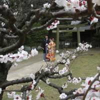 A couple dressed in Japanese traditional wedding kimono pose for a photograph at Hamarikyu Garden in Tokyo on March 6. The revision to the Civil Code, which dates back to 1898, is not enough to rectify Japan's sexist laws, the U.N. said on Monday. | AP