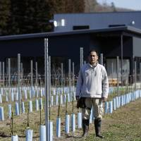 Akiu Winery operator Chikafusa Mohri, an architect who has spent his career designing hot-spring baths, stands in front of the winery's vineyard. Mohri hopes to pioneer a wine tourism-led revival in the country's northeast.   KIYOSHI OTA / BLOOMBERG