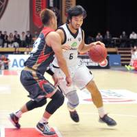 Ryukyu guard Shigeyuki Kinjo, seen in a December 2015 file photo, is a capable scorer, hard-nosed defender and valuable mentor for the team's younger players. | YOSHIAKI MIURA