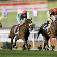 Ryan Moore rides Real Steel (right) to victory in the seventh race at the Dubai World Cup on Saturday. | KYODO