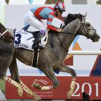 Lani earns trip to Kentucky Derby