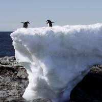 Climate forecasts may be flawed, says study
