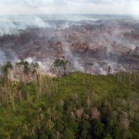 As Indonesian forests burn, new anti-fire agency feels the heat