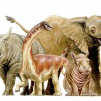 Baby dinosaur species grew at a record-busting rate