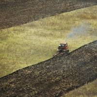 Russia's billionaire farmers reaping fortunes from food sanctions