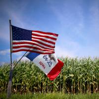 The American and Iowan flags fly beside a corn field in Grand Mound, Iowa, last August. | REUTERS