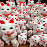 Maneki neko (beckoning cat) ornaments are seen at Gotokuji Temple in Tokyo's Setagaya Ward on March 12. Visitors purchase a cat at the temple and then set it in place in gratitude for their wishes coming true. | YOSHIAKI MIURA