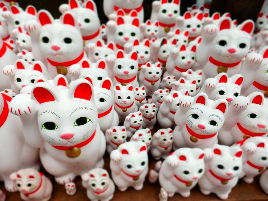 Tokyo temple's beckoning cats keep visitors purring in