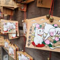 Wooden prayer tablets decorated with images of a beckoning cat and a monkey, this year's Chinese zodiac symbol, are displayed at Gotokuji Temple in Tokyo's Setagaya Ward on March 12. | YOSHIAKI MIURA