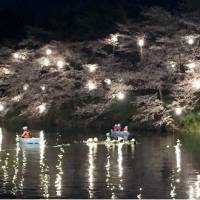 Boy drowns after boat flips in Niigata's Takada Park while viewing cherry blossoms