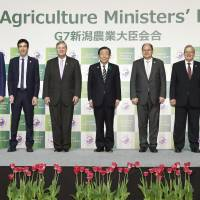 Innovation, investment needed for food security, G-7 officials say