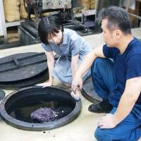 Retailer bets on generational links to save Japanese craft industry