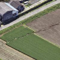An aerial photo Sunday shows farmland disturbed along a fault line in Mashiki, Kumamoto Prefecture. | KYODO