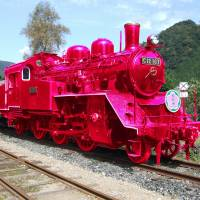 Tottori focuses on bright side with pink-themed photo contest