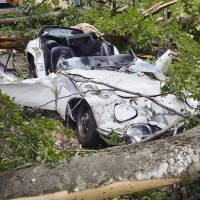 Man sues Toyama Prefecture over destruction of classic Toyota 2000GT by falling tree