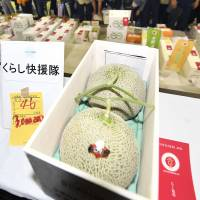 A pair of melons produced in Yubari, Hokkaido, on Thursday fetched a record ¥3 million at a Sapporo wholesale market. | KYODO