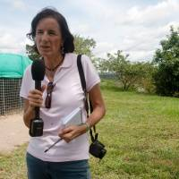 Colombian pair vanish while reporting on Spanish journalist's disappearance