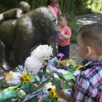 Cincinnati Zoo vigil remembers gorilla killed 'in senseless tragedy' to save boy