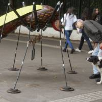 A Sao Paulo resident examines an Aedes aegypti mosquito sculpture created by street artist Andre Farkas to increase awareness on the spread of the Zika virus in Brazil.   AP