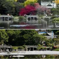 Kumamoto garden's spring-fed pond dries up