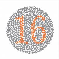 A color plate based on Shinobu Ishihara's diagnostic test. All subjects should be able to read the digits '1' and '6.' | ISTOCK