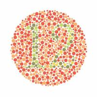A color plate based on Shinobu Ishihara's diagnostic test. Subjects with a red-green deficiency may have trouble seeing the digits '1' and '2.'  | ISTOCK