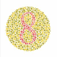 A color plate based on Shinobu Ishihara's diagnostic test. Subjects with a red-green deficiency may have trouble seeing the digit '8.' | ISTOCK