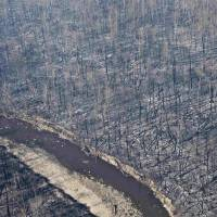 Canada wildfires in 'bullseye' of warming trends