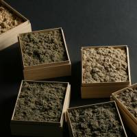 Moxa dried mugwort comes in a variety of grades. | HARIKYU MUSEUM-MUSEUM OF TRADITIONAL MEDICINE