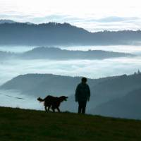 A couple walk their dog near Freiburg, in the Rhine Valley of southern Germany. | AP
