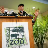Police probe boy's entry into zoo gorilla exhibit, animal's killing; federal investigation also in works