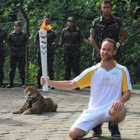 Jaguar used in Olympic ceremony shot dead in Brazil