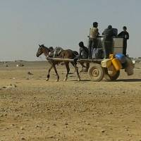 64,000 Syrians stuck on sealed Jordan border running out of water, food