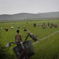 North Korea orders citizens to work harder