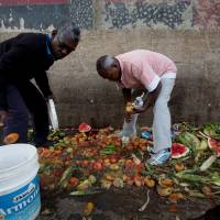 Pedro Hernandez (eft) and his friend, Luis Daza, pick up tomatoes from the trash area of the Coche public market in Caracas on May 31. At Coche, even once middle-class Venezuelans made desperate by the country's economic collapse have taken to sifting through the trash to resell or feed themselves on discarded fruits and vegetables. | AP