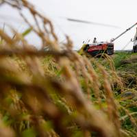 The number of foreigners working illegally on farms in Japan increased threefold over the three-year period ending in 2015. | BLOOMBERG
