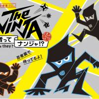 The Ninja: Who Were They?