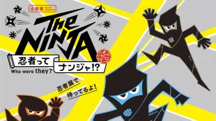 The Ninja — who were they?