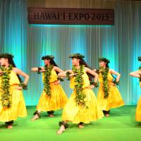 Indulging Hawaiian culture, cuisine in Japan