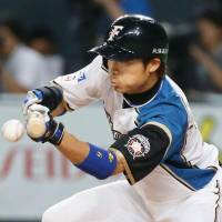 Fighters squeeze past Carp