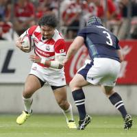 Japan looking to put on royal performance against Scotland