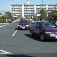 Driving schools cope with an auto-immune generation