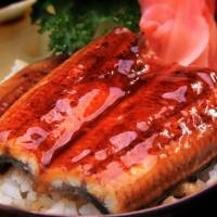 Aeon to sell catfish that tastes like eel